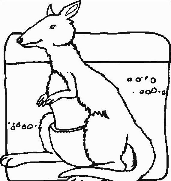 Canguro da colorare 25