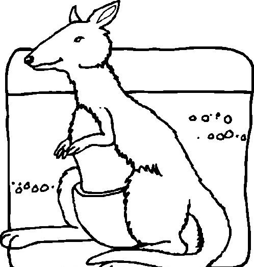Canguro da colorare 34