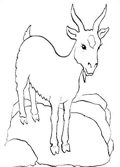 Animale da colorare 118
