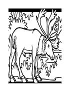Animale misto da colorare 121