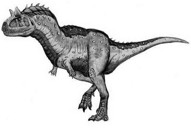 Dinosauro da colorare 19