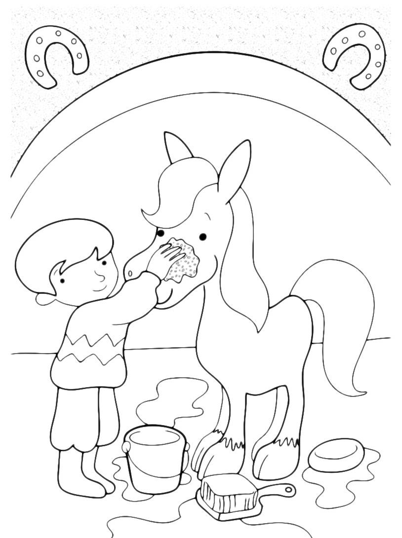 Cavallo da colorare 19