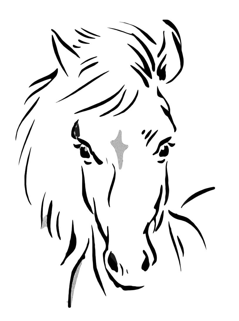 Cavallo da colorare 21