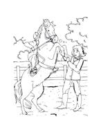 Cavallo da colorare 23