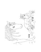 Cavallo da colorare 25