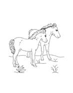 Cavallo da colorare 28