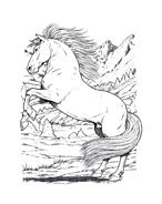 Cavallo da colorare 33