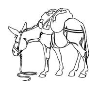 Cavallo da colorare 39