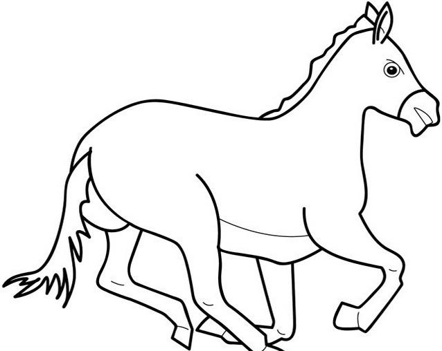 Cavallo da colorare 40