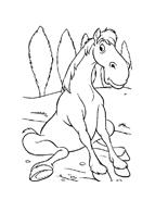 Cavallo da colorare 42