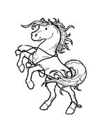 Cavallo da colorare 51