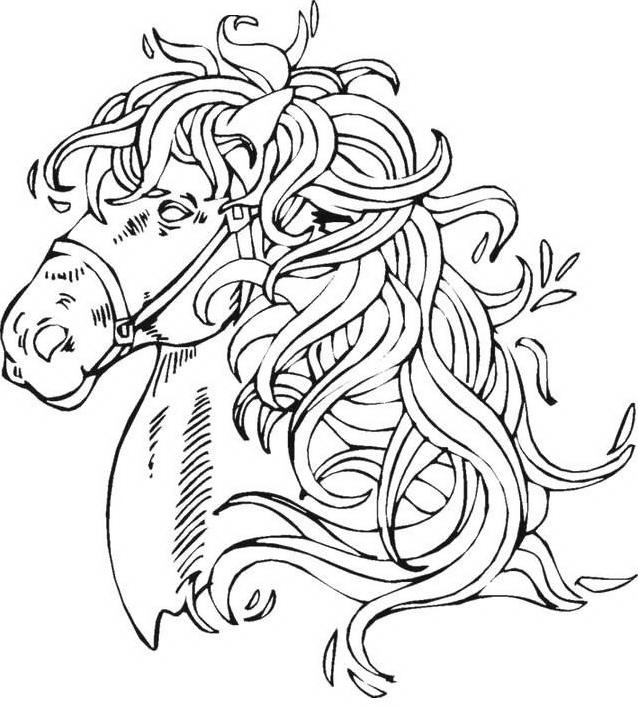 Cavallo da colorare 55