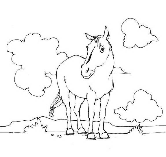 Cavallo da colorare 57