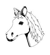 Cavallo da colorare 60