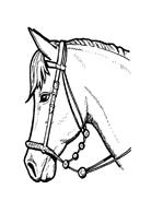 Cavallo da colorare 63