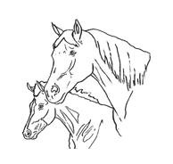Cavallo da colorare 67