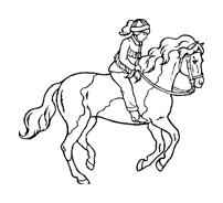 Cavalli Da Colorare Disegnidacolorare It