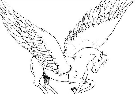 Cavallo da colorare 88