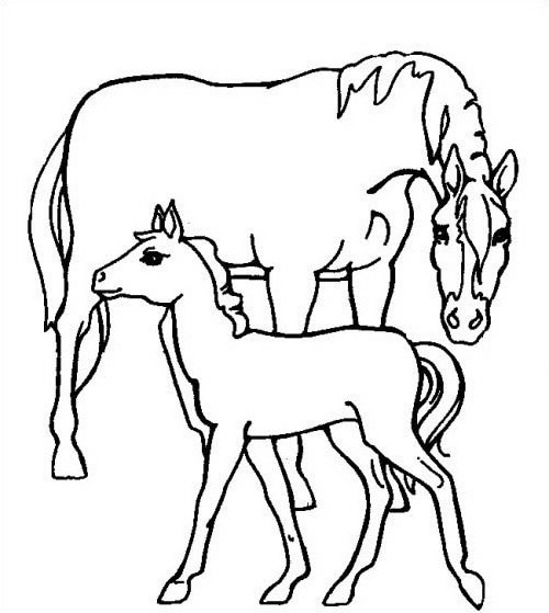 Cavallo da colorare 100