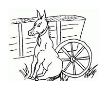 Cavallo da colorare 101