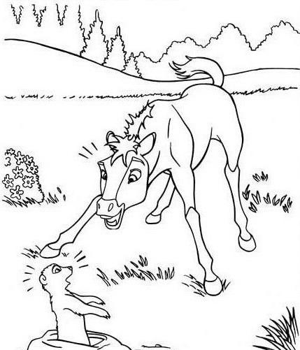 Cavallo da colorare 111