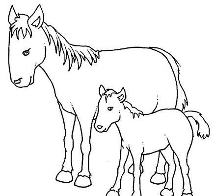 Cavallo da colorare 114