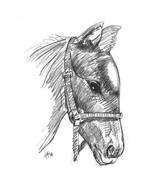 Cavallo da colorare 136
