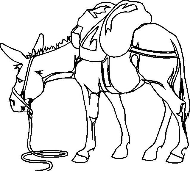 Cavallo da colorare 137
