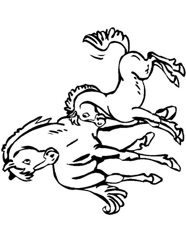Cavallo da colorare 145