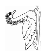 Uccello da colorare 30