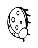 Coccinella da colorare 3
