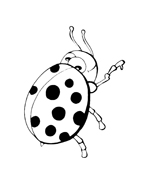Coccinella da colorare 5