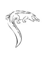 Coccodrillo da colorare 26