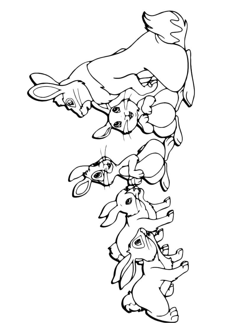 Coniglio da colorare 2