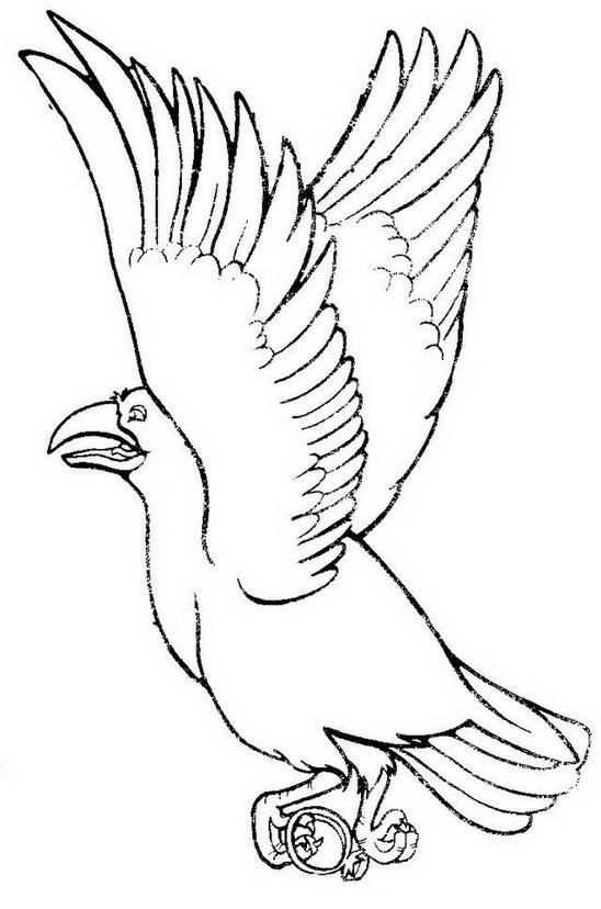Uccello da colorare 37