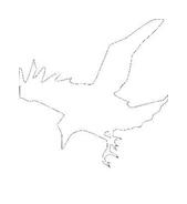 Uccello da colorare 42