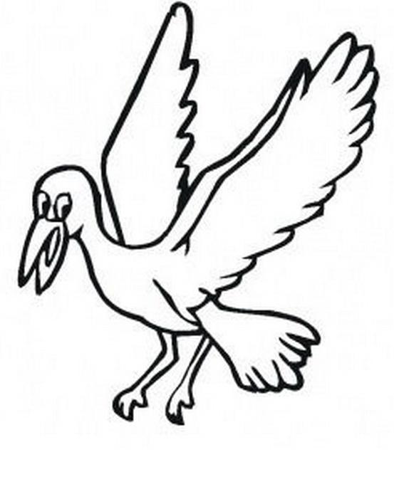 Uccello da colorare 43