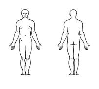 Corpo umano da colorare 31