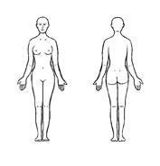 Corpo umano da colorare 32