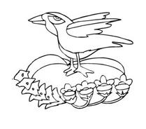 Uccello da colorare 49