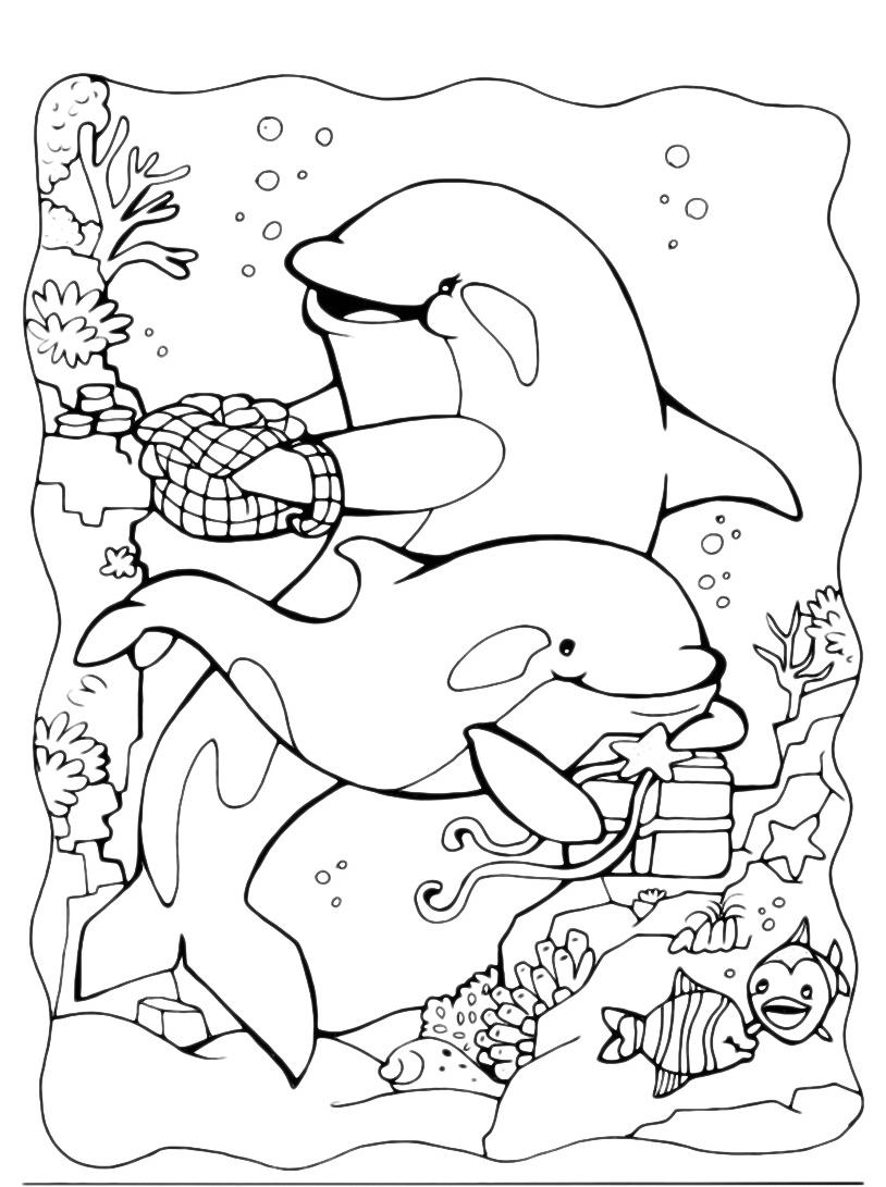 Delfino da colorare 19