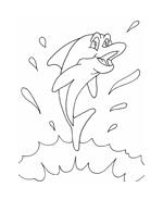 Delfino da colorare 33