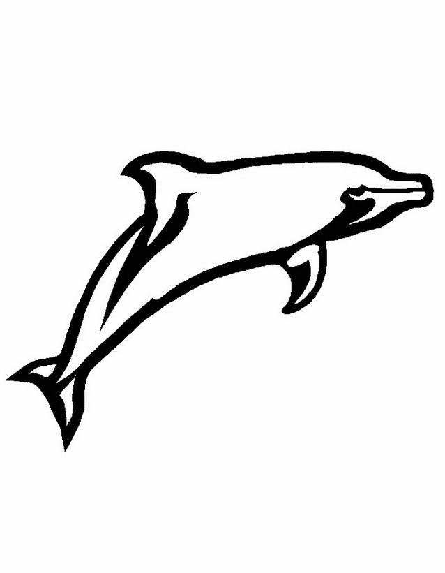 Delfino da colorare 41