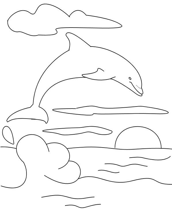 Delfino da colorare 51