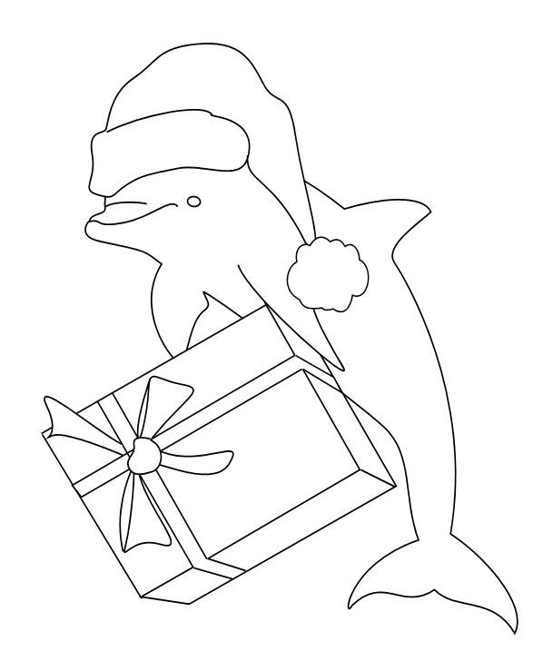 Delfino da colorare 52