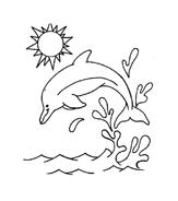 Delfino da colorare 58
