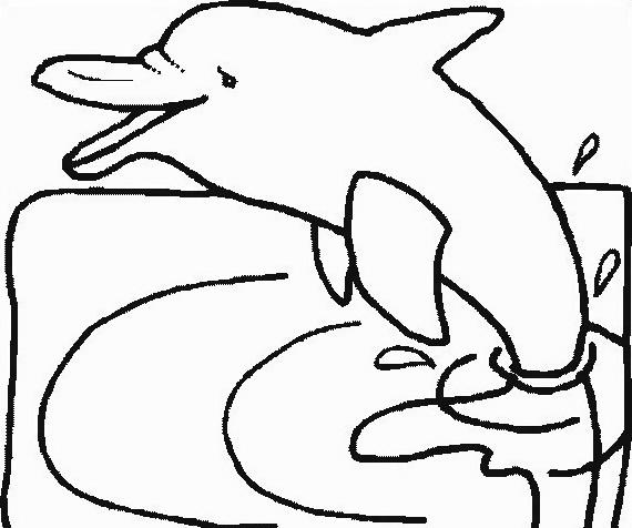 Delfino da colorare 73
