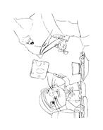 Despereaux da colorare 35