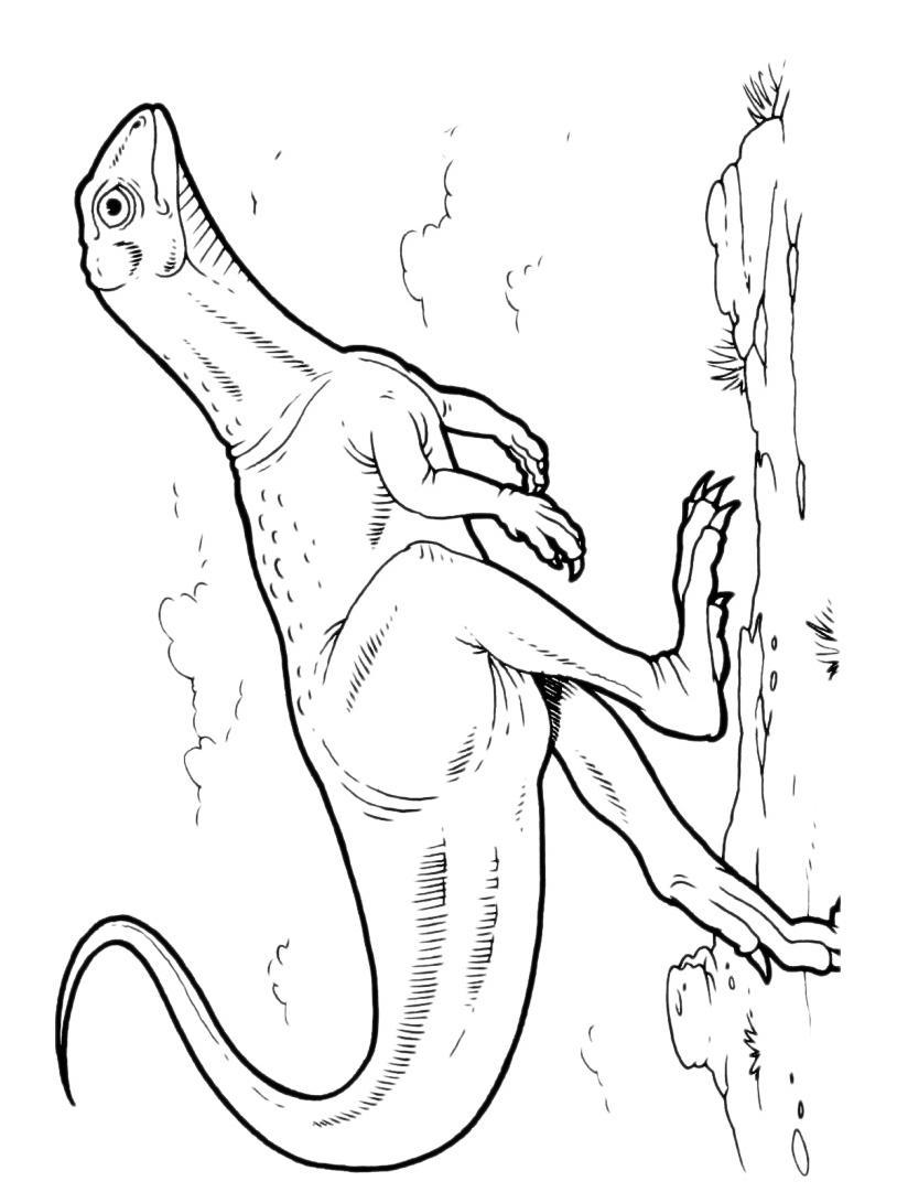 Dinosauro da colorare 111