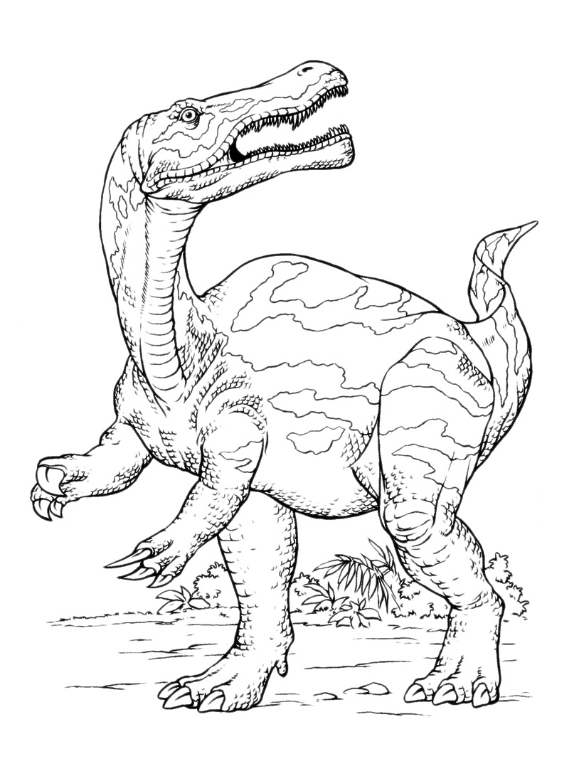 Dinosauro da colorare 116